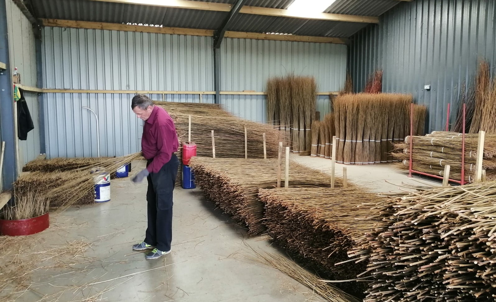 sorting willow by hand